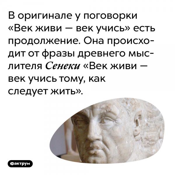 В оригинале у поговорки «Век живи — век учись» есть продолжение