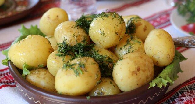 Медики рассказали, кому нельзя есть картофель