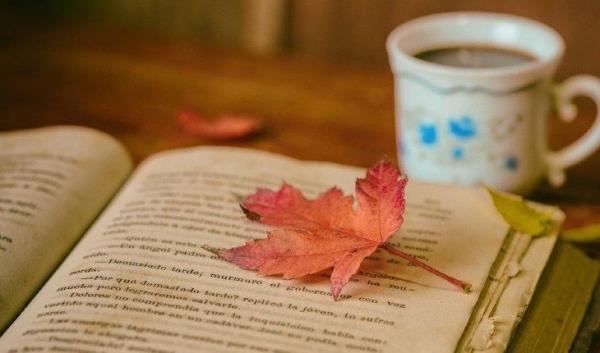 Осень в жанре магического реализма: 10 книг для уютного чтения в пледе