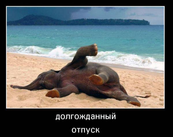 Поздравление с днем единства россии открытки прикольные большинства